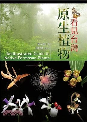 看見台灣原生植物 = Illustrated guide to native Formosan plants