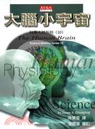 大腦小宇宙