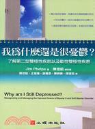 我為什麼還是很憂鬱?:了解第二型雙極性疾患以及軟性雙極性疾患