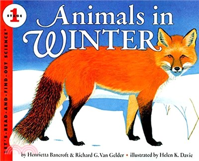 Animals in Winter (Stage 1)