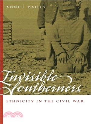 Invisible Southerners—Ethnicity in the Civil War