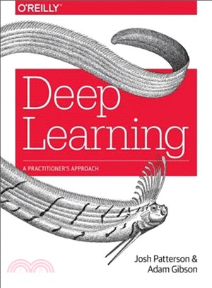 Deep Learning ─ A Practitioner's Approach