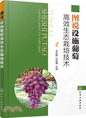 圖說設施葡萄高效生態栽培技術(簡體書)