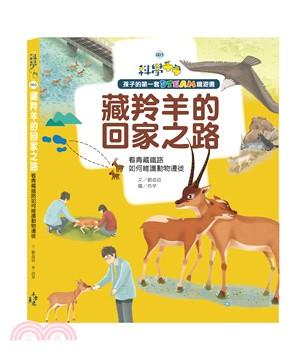 藏羚羊的回家之路 : 看青藏鐵路如何維護動物遷徙